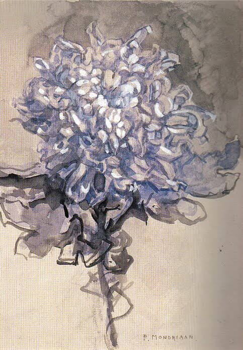 Chrysanthemum, 1909 by Piet Mondrian
